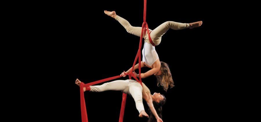 aerialdancer